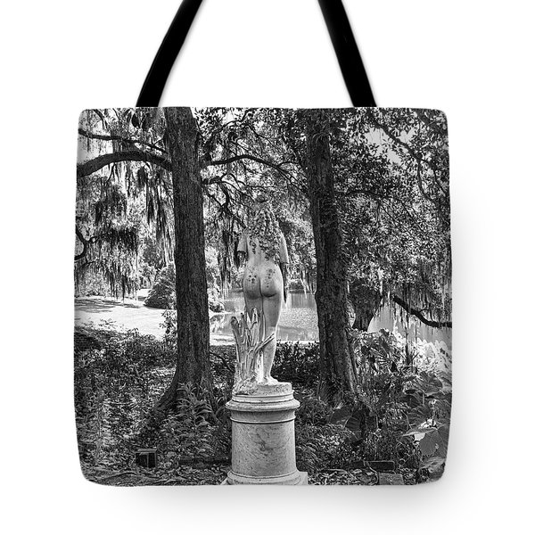 Framed Tote Bag by Alan Raasch