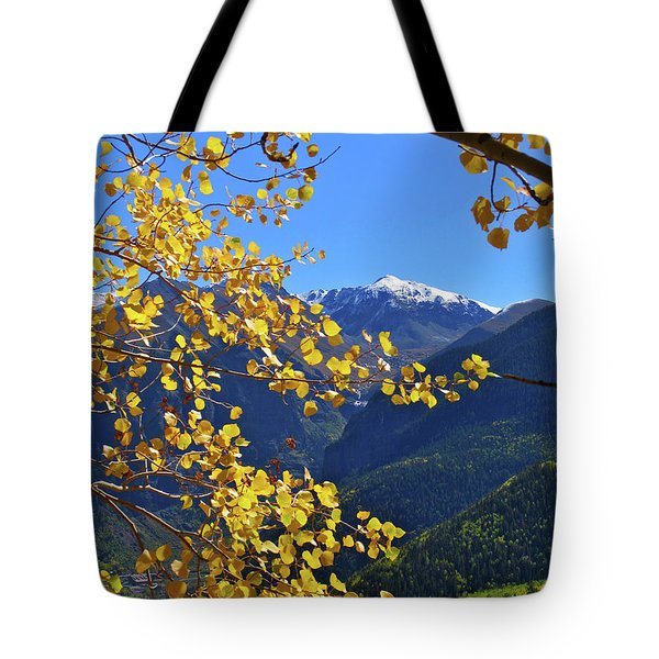 Framed By Fall Tote Bag by Scott Mahon