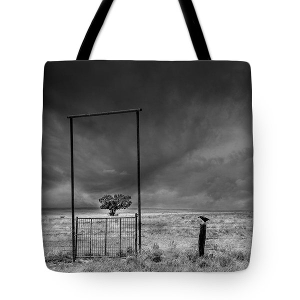 Framed Tote Bag by Carolyn Dalessandro