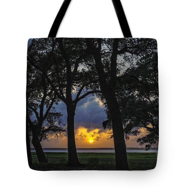 Framed Tote Bag