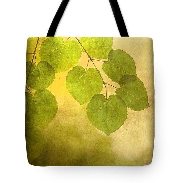 Framed In Light Tote Bag