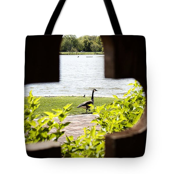 Framed Nature Tote Bag