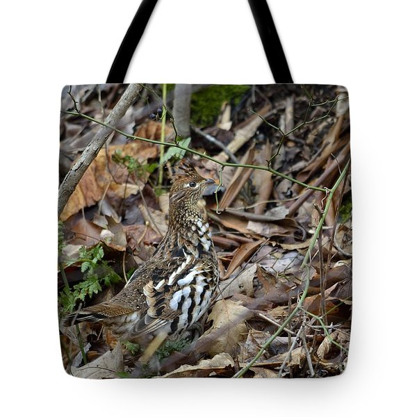 Framed Rugr Tote Bag by Randy Bodkins
