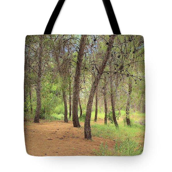 Frank Bonelli Park Tote Bag