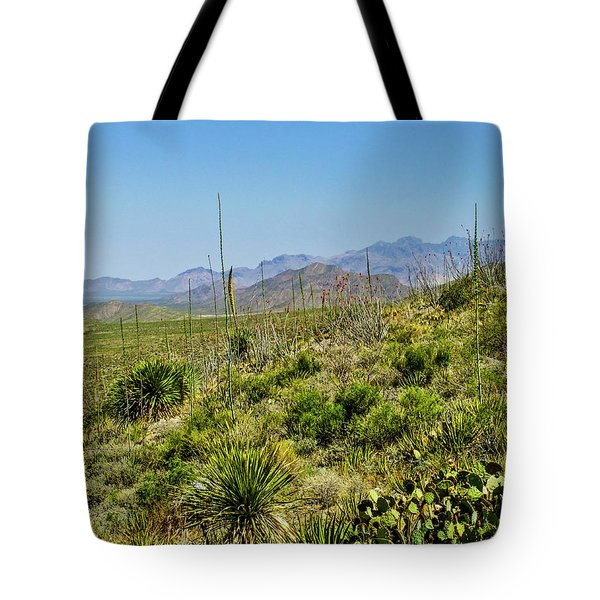 Franklin Mountains State Park Facing North Tote Bag