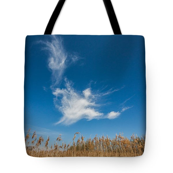 Tote Bag featuring the photograph Freedom by Davorin Mance