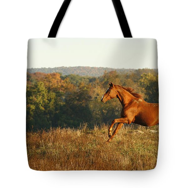 Freedom In The Late Afternoon Tote Bag