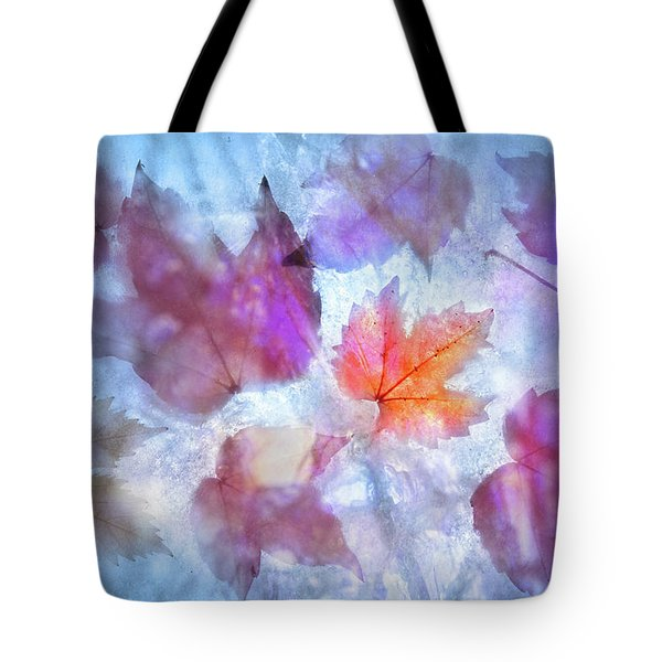 Freeze Tote Bag by Richard Piper