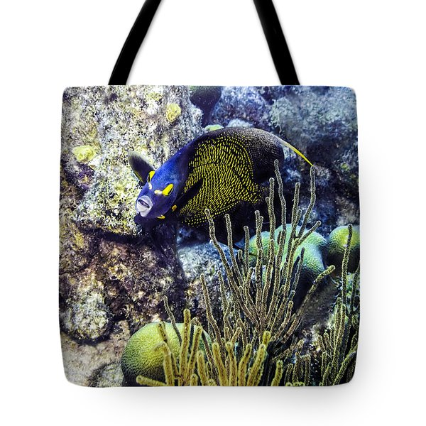 French Angelfish Tote Bag by Perla Copernik