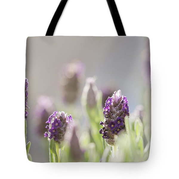 French Lavendar Buds Tote Bag