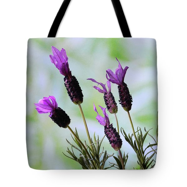 French Lavender Tote Bag by Terence Davis