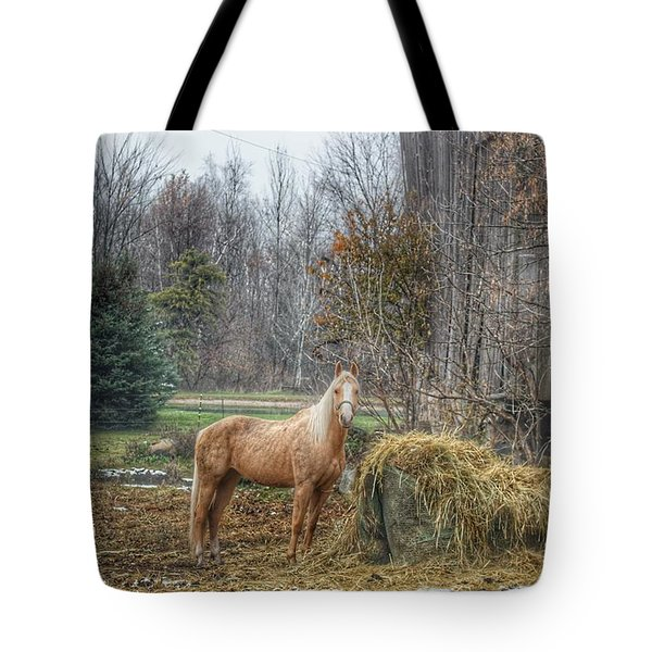 1016 - Frenchline Road Carmel Mare I Tote Bag