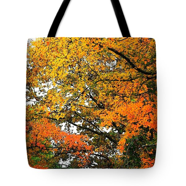 Tote Bag featuring the photograph Fresco Autumn Diptych Right by Ellen Barron O'Reilly