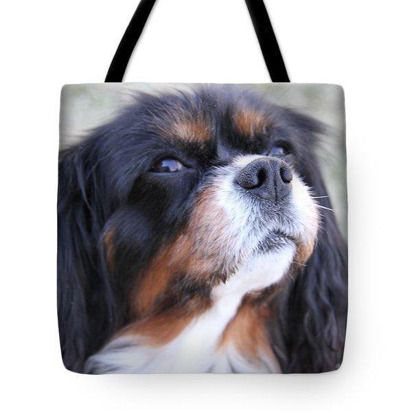 Fresh Air Tote Bag by Bobbie Moller