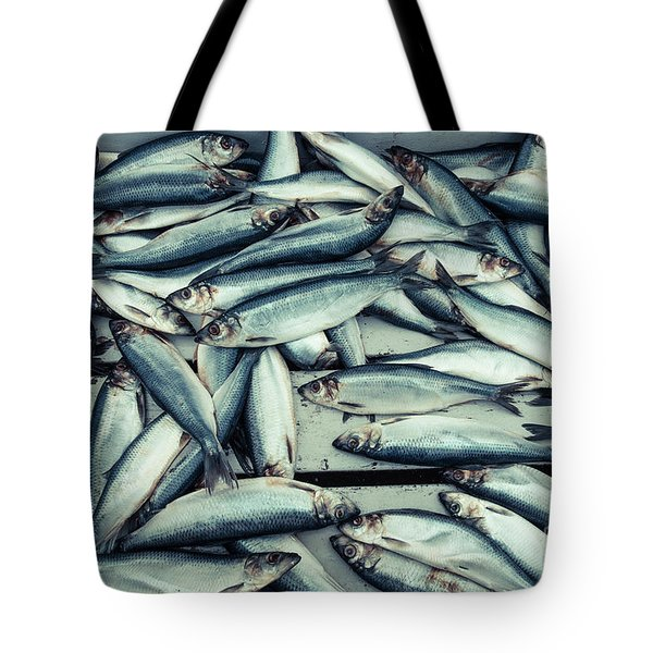 Tote Bag featuring the photograph Fresh Caught Herring Fish by Edward Fielding
