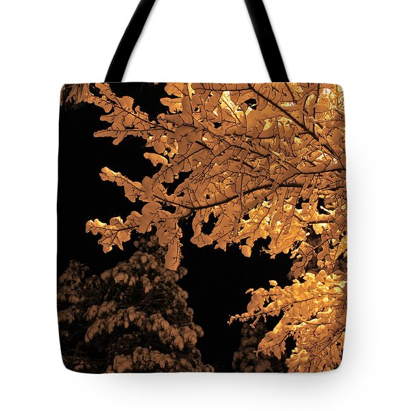 Tote Bag featuring the photograph Fresh Cloak by Gary Kaylor