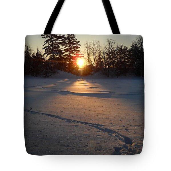 Fresh Deer Tracks At Sunrise Tote Bag