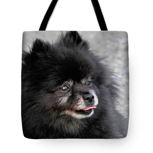 Tote Bag featuring the photograph Fresh Dog by Debbie Stahre