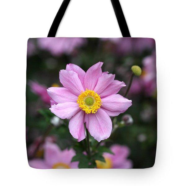 Fresh Field Flowers Tote Bag