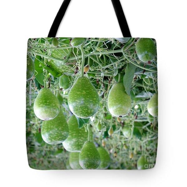 Fresh Green Calabash Gourds Tote Bag