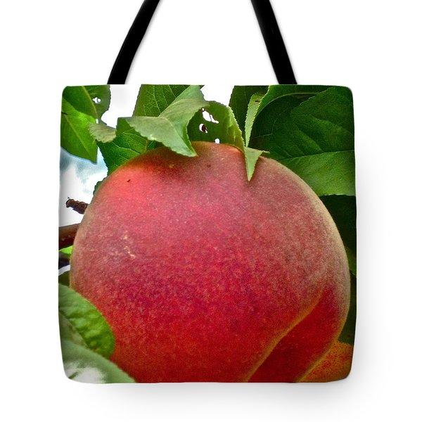 Fresh Peach Tote Bag by Gwyn Newcombe