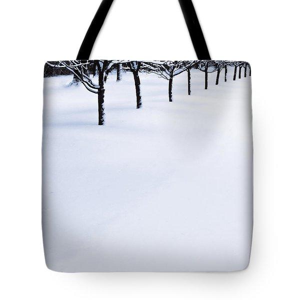 Fresh Snow Tote Bag
