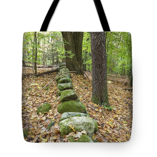 Friedsam Town Forest - Chesterfield New Hampshire Tote Bag