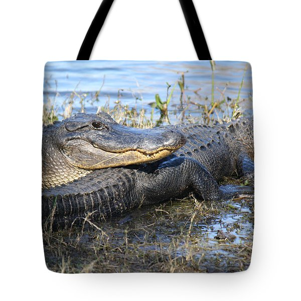 Friend, I Got Your Back Tote Bag by Roena King