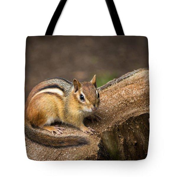 Friendly Chipmunk Tote Bag by Paul Miller