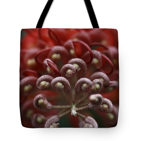 Friendly Foe Tote Bag by Stephen Mitchell