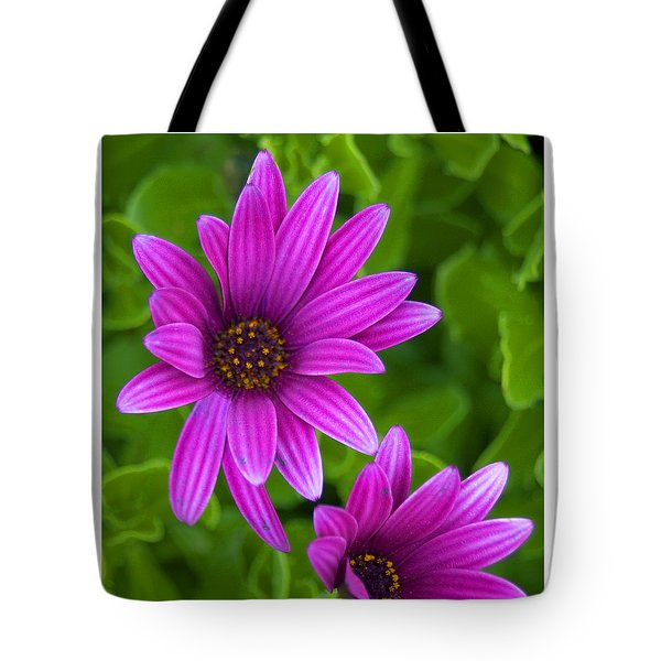 Tote Bag featuring the photograph Friends by R Thomas Berner