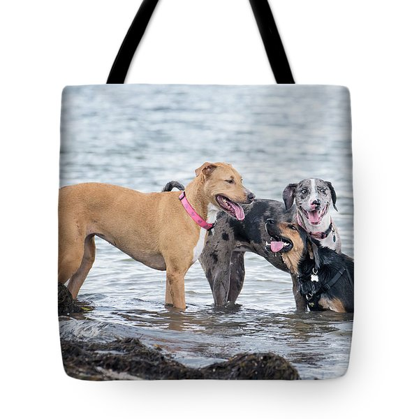 Friends Tote Bag by Stephanie Hayes