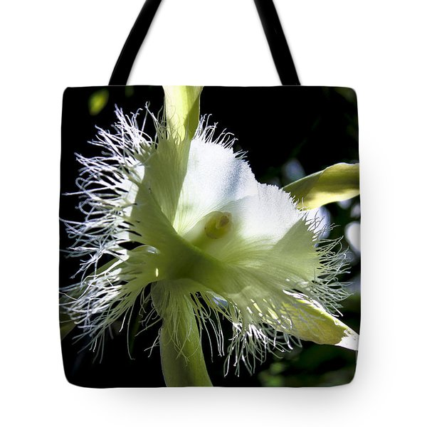 Fringed Orchid Tote Bag