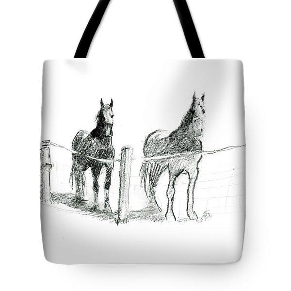 Friesian Horses Tote Bag