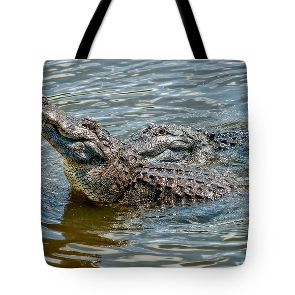 Tote Bag featuring the photograph Frisky In Florida by Christopher Holmes