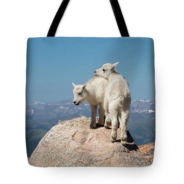 Frisky Mountain Goat Babies Tote Bag