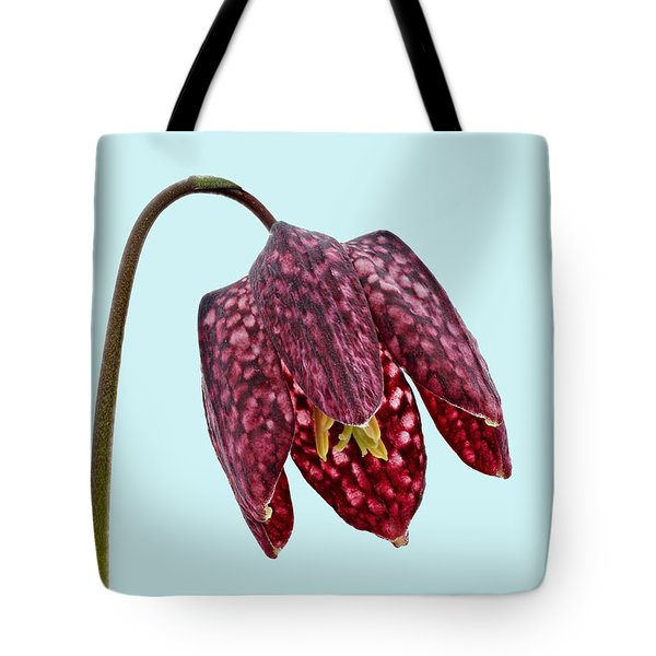 Tote Bag featuring the photograph Fritillaria Meleagris - Blue Background by Paul Gulliver