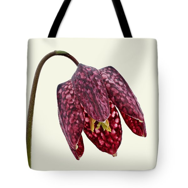 Tote Bag featuring the photograph Fritillaria Meleagris - Cream Background by Paul Gulliver