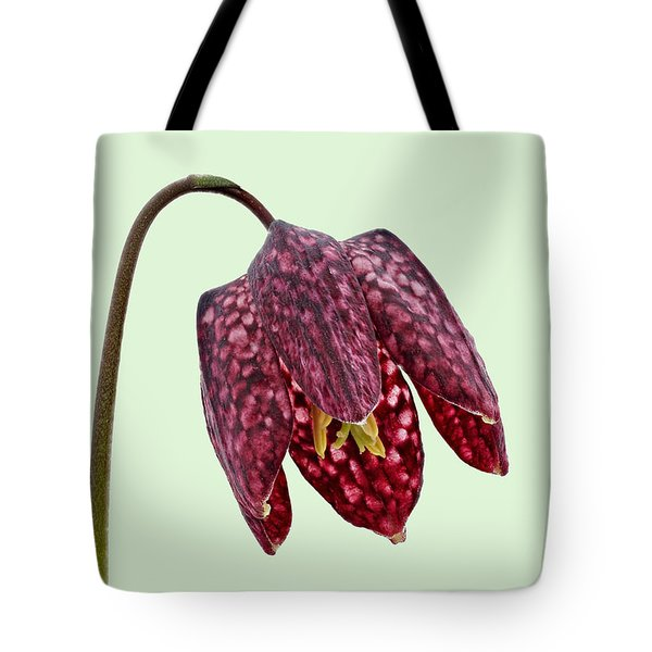 Tote Bag featuring the photograph Fritillaria Meleagris - Green Background by Paul Gulliver