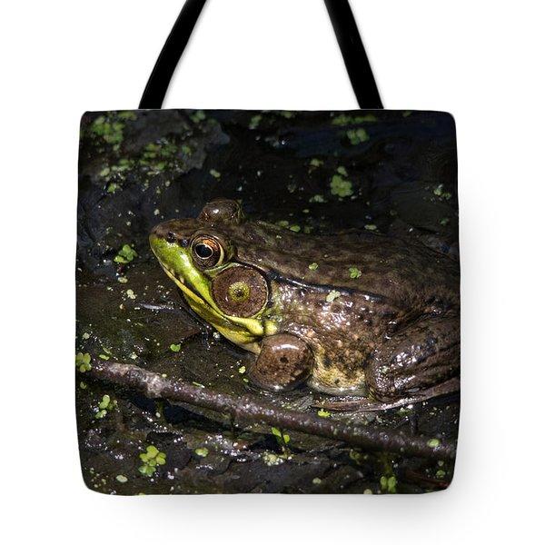 Frog Closeup Tote Bag