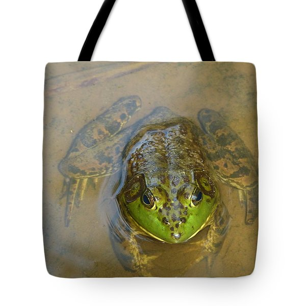 Tote Bag featuring the photograph Frog Of Lake Redman by Donald C Morgan