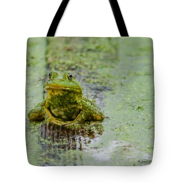 Tote Bag featuring the photograph Frog On A Plank by Edward Peterson