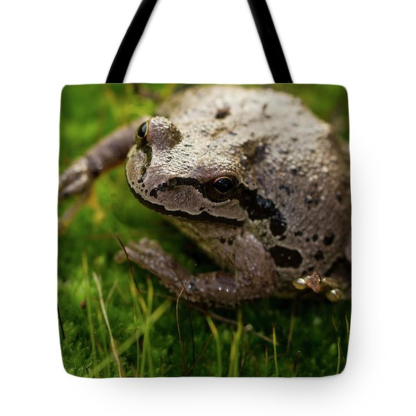 Tote Bag featuring the photograph Frog On The Grass by Jean Noren