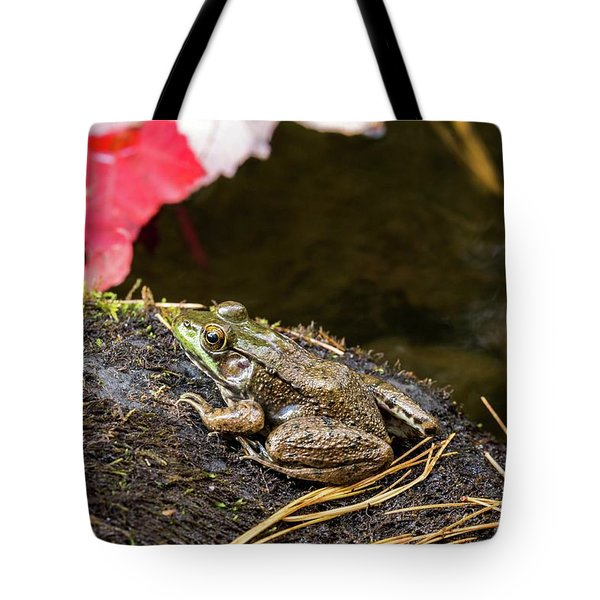 Tote Bag featuring the photograph Frog by Paul Schultz