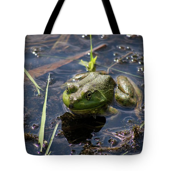 Frog  Tote Bag by Trace Kittrell