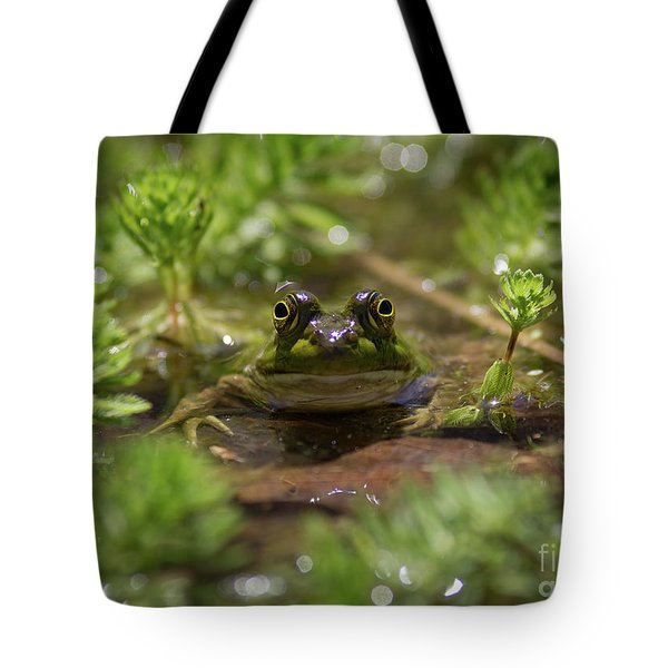 Tote Bag featuring the photograph Froggy by Douglas Stucky