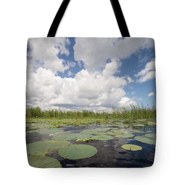 From A Frog's Point Of View - Lake Okeechobee Tote Bag