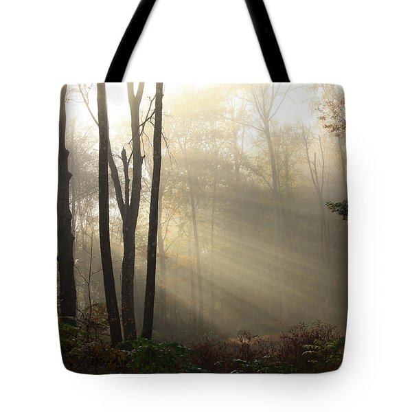 From Above Tote Bag by Karol Livote