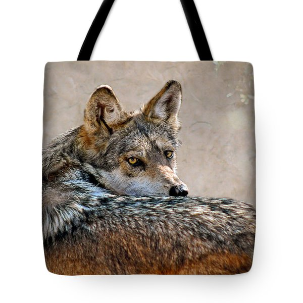 From Out Of The Mist Tote Bag