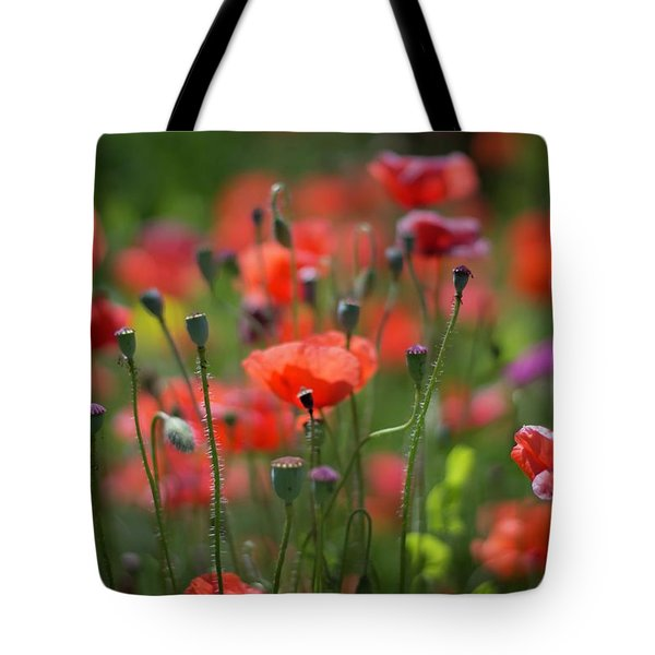 From Seed, To Seed Tote Bag